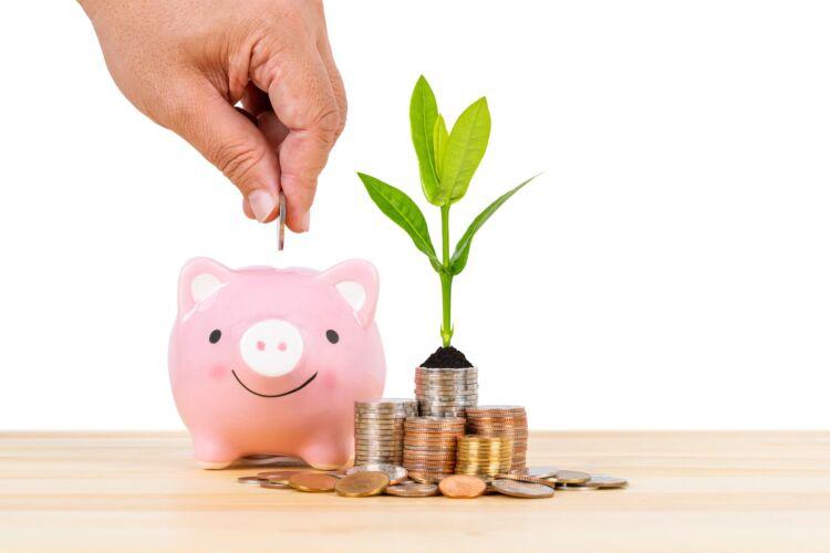 貯金と投資の割合はどれぐらいが良い?収入などからみる適正割合